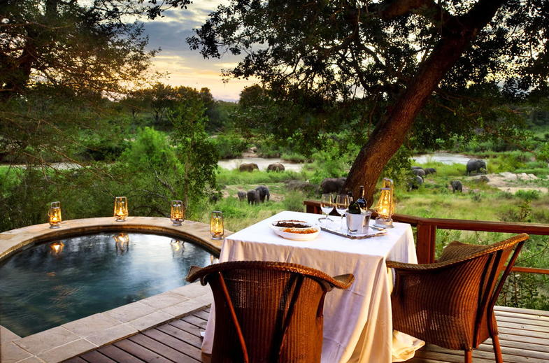 See Elephants from the deck on your Elegant Escape safari.
