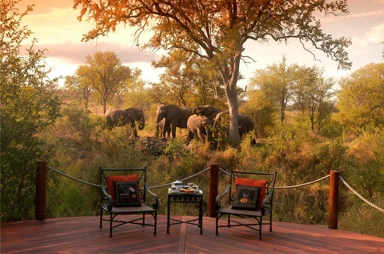Luxury Kruger Park Safari deck with view of Elephants.
